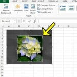 How to Crop a Picture in Excel 2013
