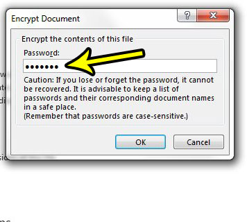 how to use a password in excel 2013