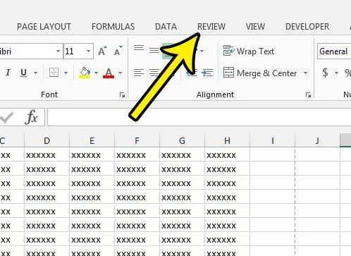 click the excel 2013 review tab