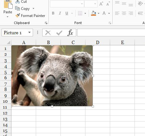 excel picture link