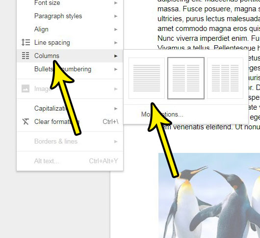how to reduce columns in google docs